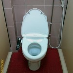 Coway BA12 bidet seat on school toilet